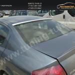 Спойлер / козырек заднего стекла Peugeot 407 2004-2010