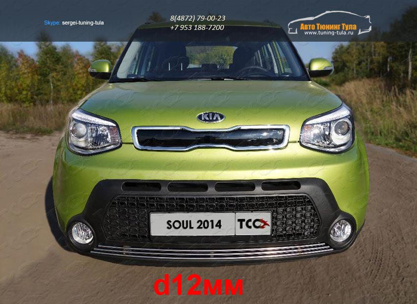Решетка радиатора нижняя d12 мм или d16 мм KIA SOUL 2014+/арт.752-4