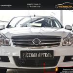 Защитная сетка переднего бампера Nissan Almera 2014+