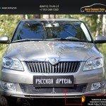 Защитная сетка переднего бампера Skoda Fabia II 2010-2013