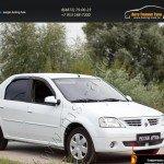 Защитная сетка переднего бампера Renault Logan 2004-2010